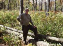 Профессия лесничий: обязанности, важные качества, где учиться – «Моё призвание»