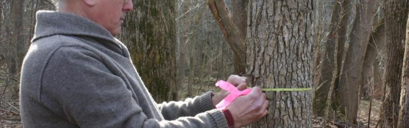 Профессия эколог: обязанности, важные качества, где учиться – «Моё призвание»