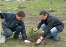 Профессия инженер-лесотехник: обязанности, важные качества, где учиться – «Моё призвание»