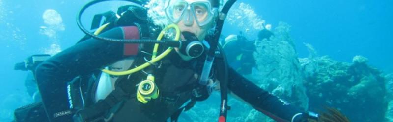 Профессия океанолог: обязанности, важные качества, где учиться – «Моё призвание»