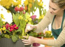 Профессия ботаник: обязанности, важные качества, где учиться – «Моё призвание»